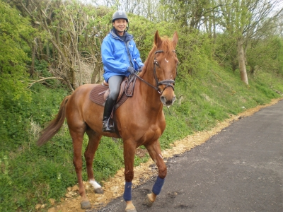 Horse Rider on Tetbury Trail