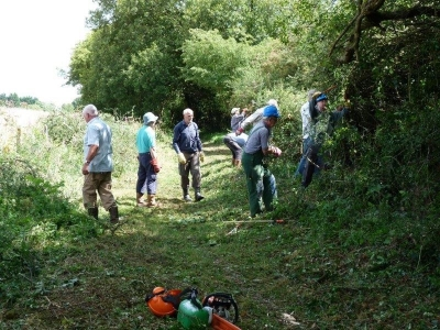 Volunteers at work clearing the trail