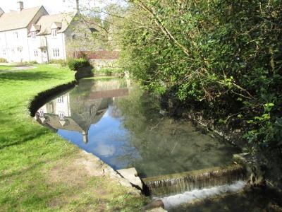 Town pond