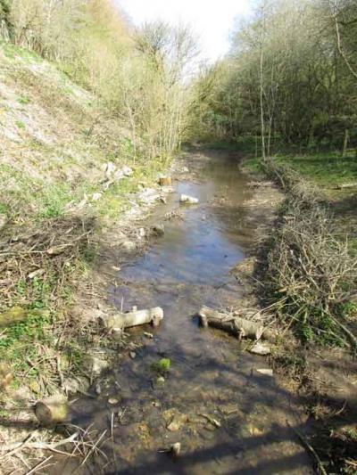 Waterflow improvements